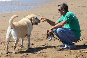 Rancho Palos Verdes Dog Beach - Daily Breeze